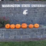 WSU Halloween